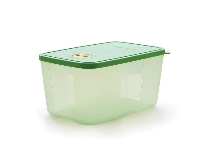 Tupperware Medium Freezermate with Dial