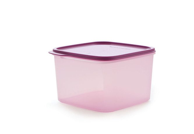 Tupperware Smart Saver Square 2